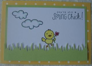 Spring Chick with Grass