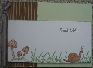 Snail Mail New