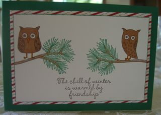 The Chill of Winter Owls