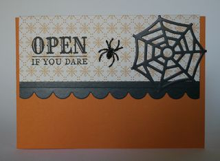 Spider Open If You Dare